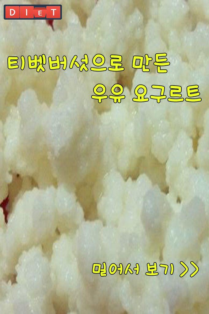 티벳버섯으로 만든 우유 요구르트