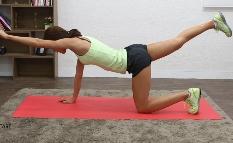 허리가 날씬해지는 운동 [버드독]