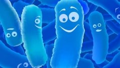 당신이 착한 유산균 `프로바이오틱스'를 섭취해야 하는 이유!