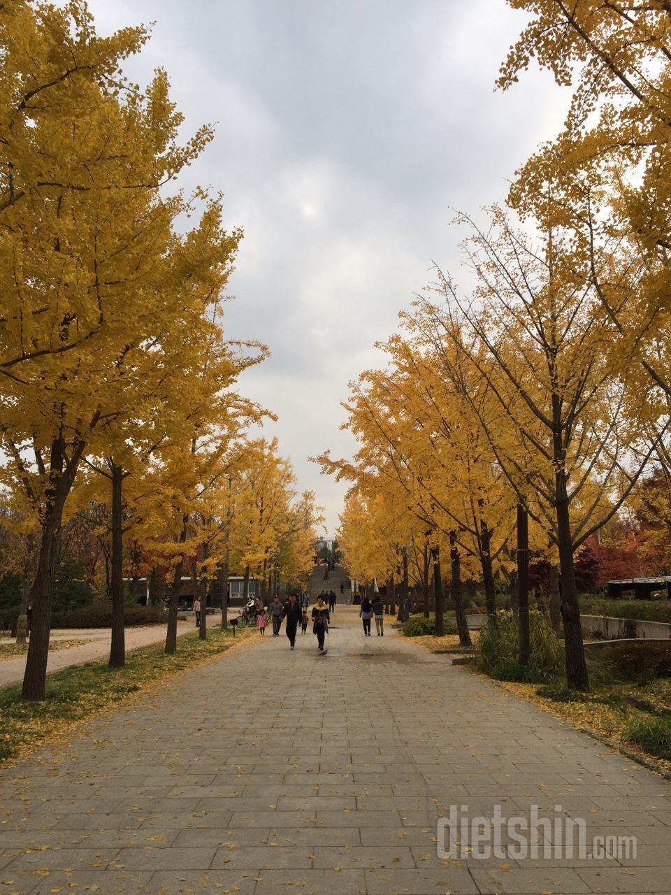 서울숲에서 산책