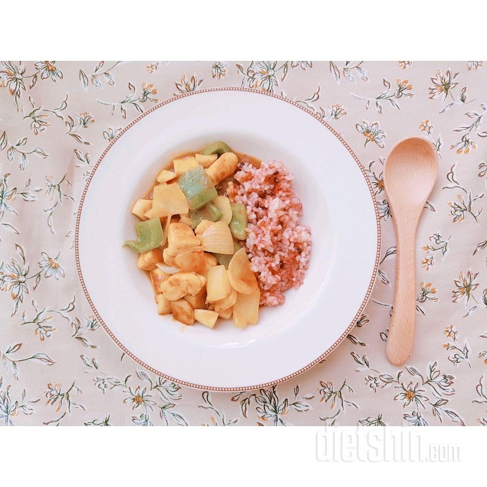 카레수니의 다이어트 카레
