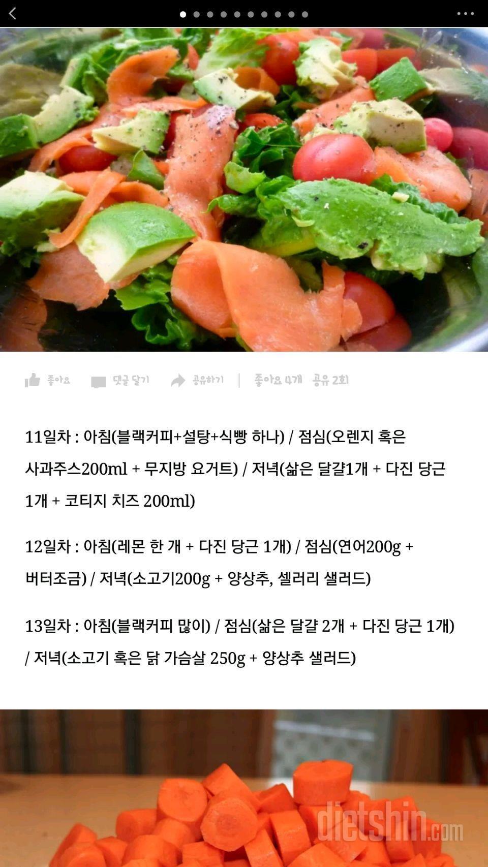 13일 다이어트 최대 20키로 감량, 식단조절!