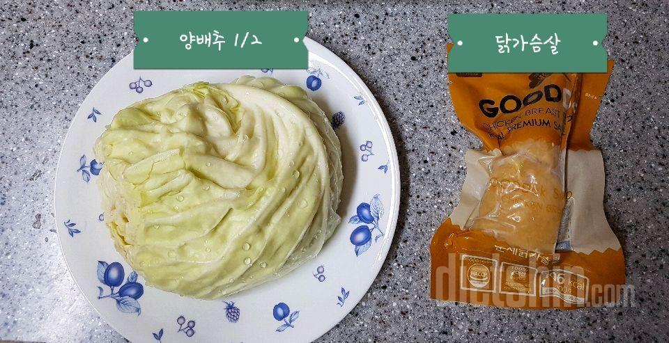 [공모전1] 양배추 feat. 닭가슴살
