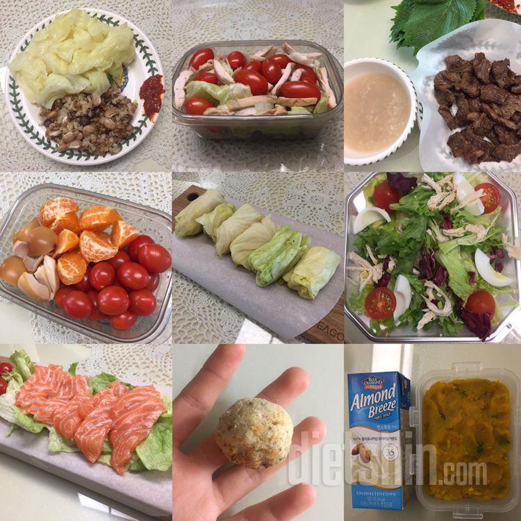 지금까지 먹은 다이어트 식단들