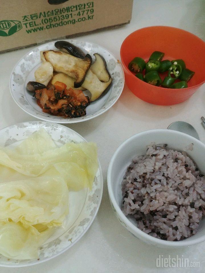 점심 식단