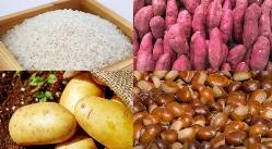다이어트에 좋은 똑똑한 탄수화물 섭취 노하우!