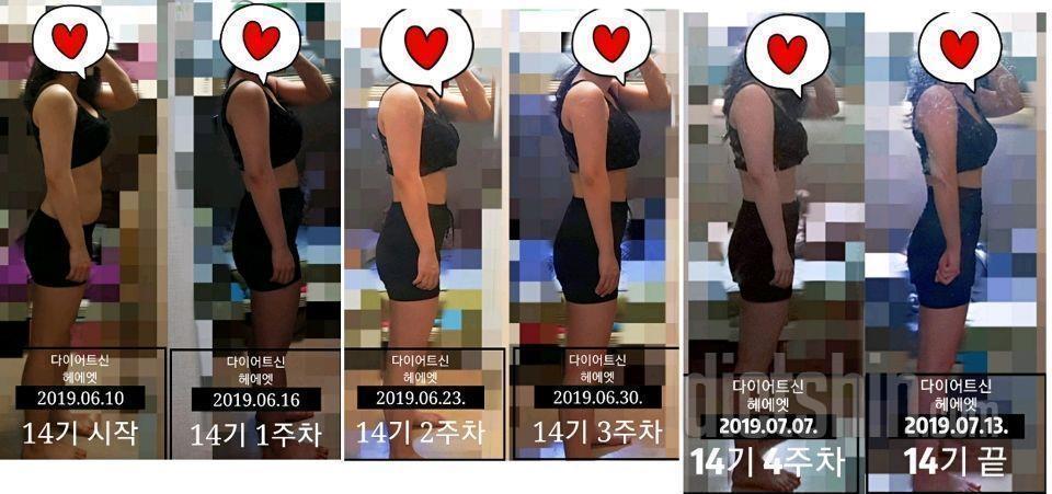 [다신 14기] 최종 후기