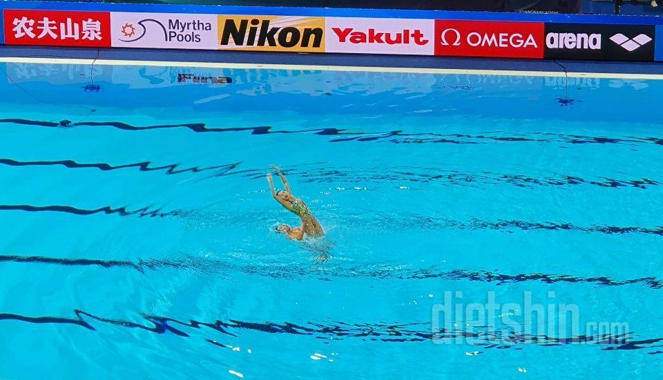 광주 세계수영선수권 대회왔어요.