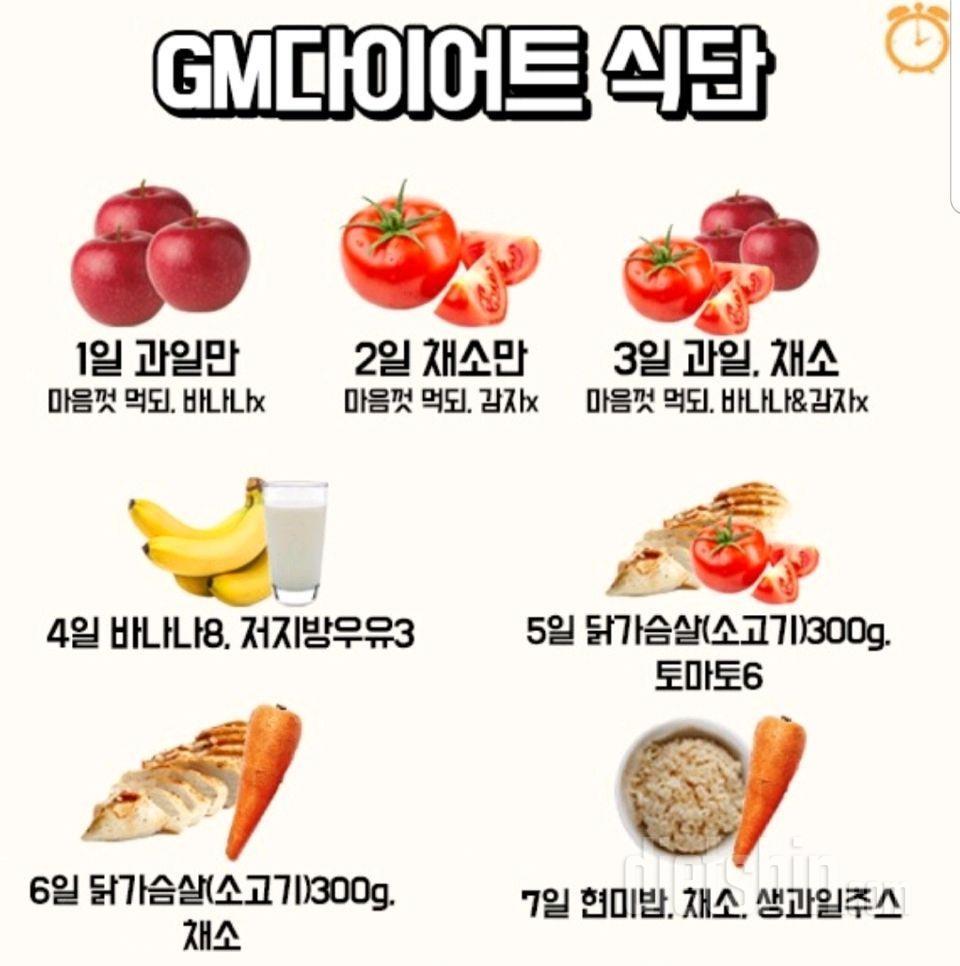 GM 다이어트