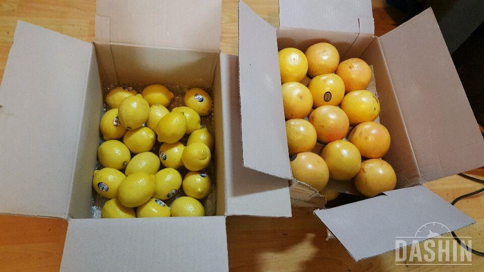 자몽식초+레몬칩+자몽칩
