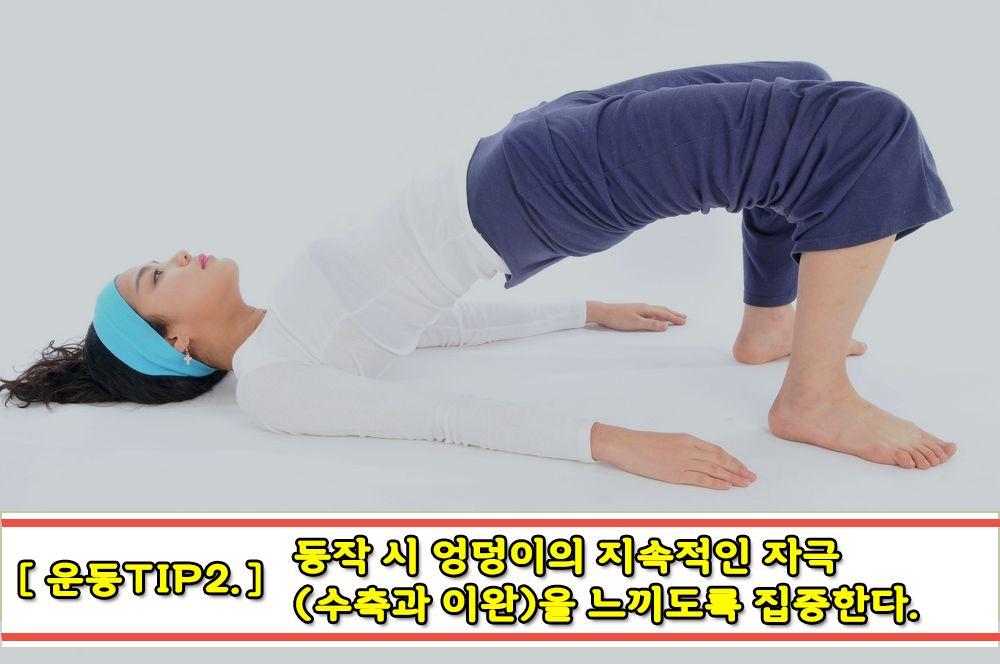 [운동]힙업운동-브릿지