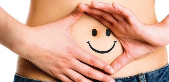 장내 착한세균이 다이어트를 돕는다?