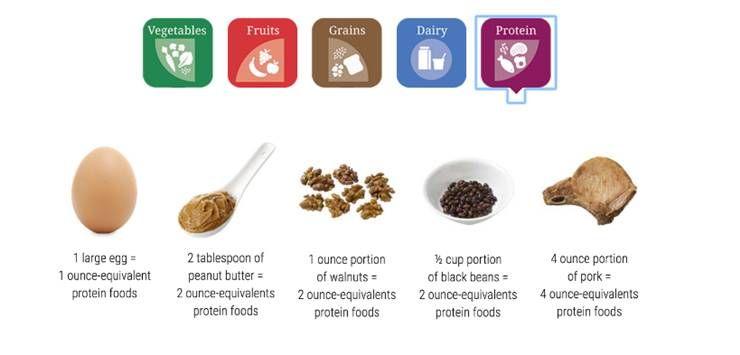 음식, 어떻게 먹어야 잘 먹는 걸까?