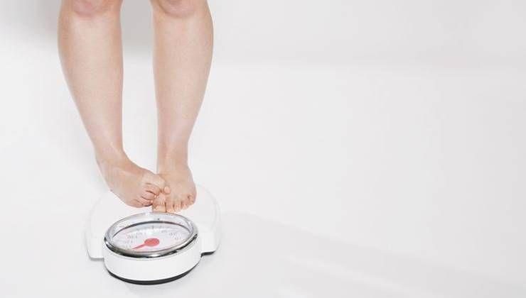 우리는 왜 살이 쪘을까?