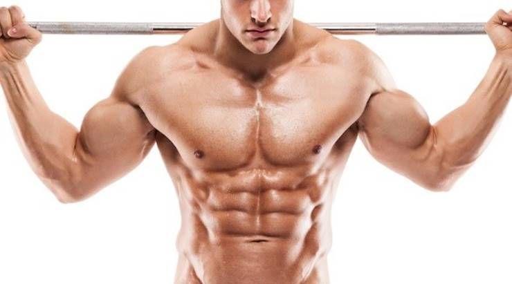 근육질 몸매 만들고 싶다면, 알아두자!