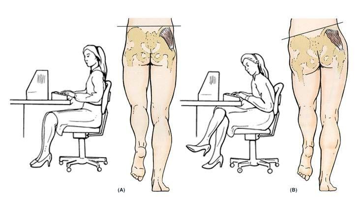오래 앉아 있으면, 엉덩이가 커진다?