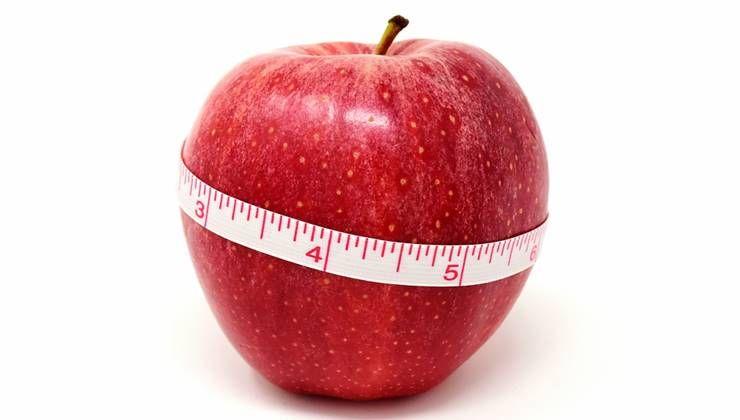 다이어트 성공, 섭취량과 활동량에 달렸다!?
