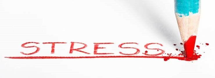 스트레스만 잘 관리해도 살 빠진다?