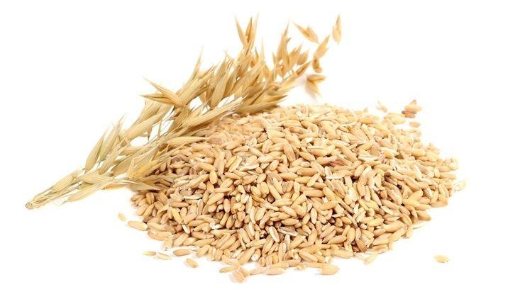 가수 장윤정 출산후 식단 (15kg 감량)