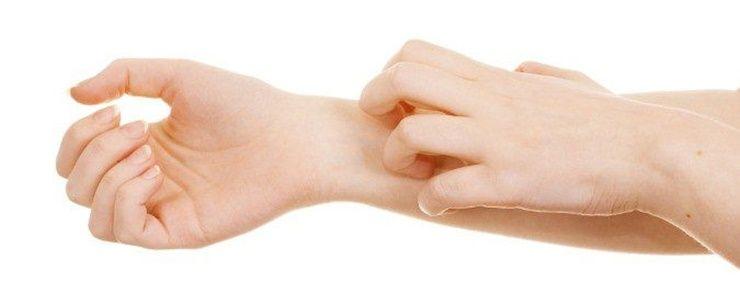 복부비만과 밀가루의 상관관계는?