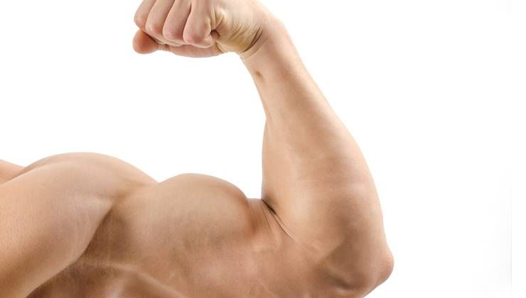 근육을 오랫동안 유지하는 노하우!