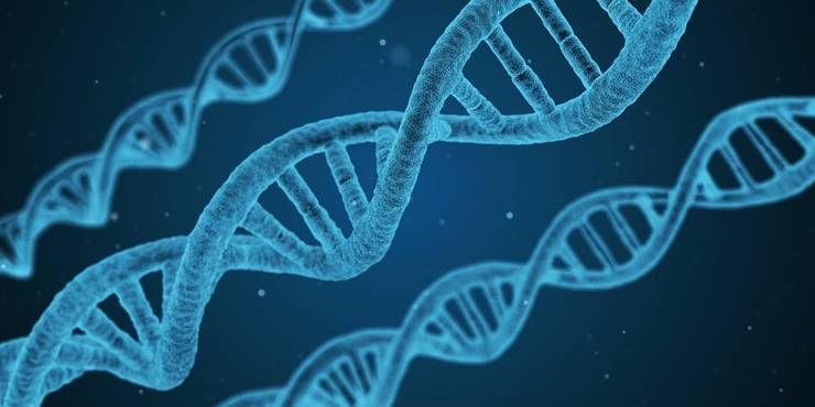 우리가 살찌는 이유, 유전자 탓일까?!