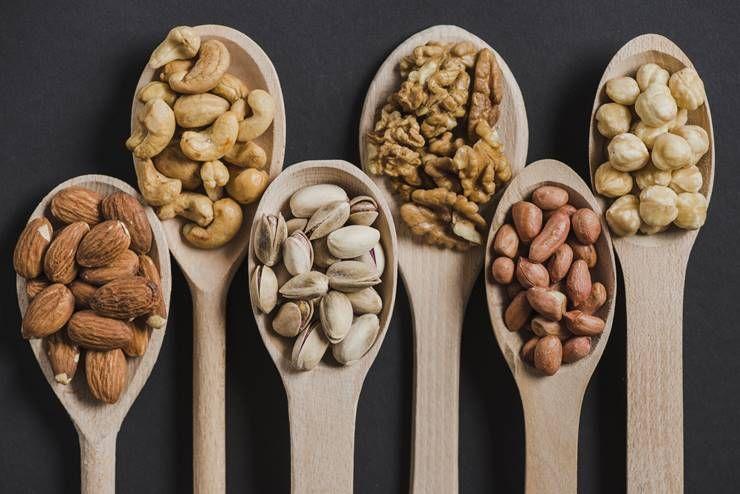 식물성 단백질 VS 동물성 단백질?!