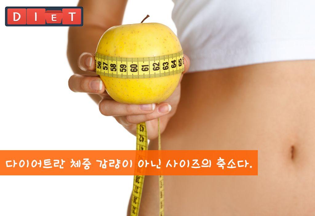 오늘의 다이어트 명언②