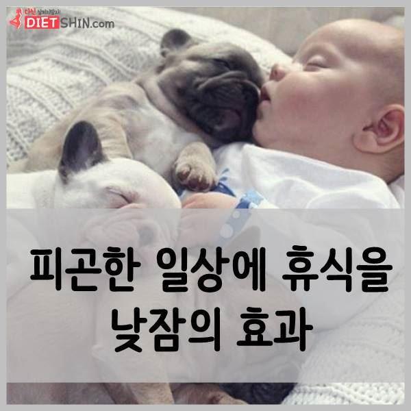 낮잠의 효과