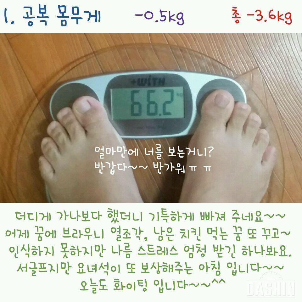[도전 다신 3기] 😉 11일차