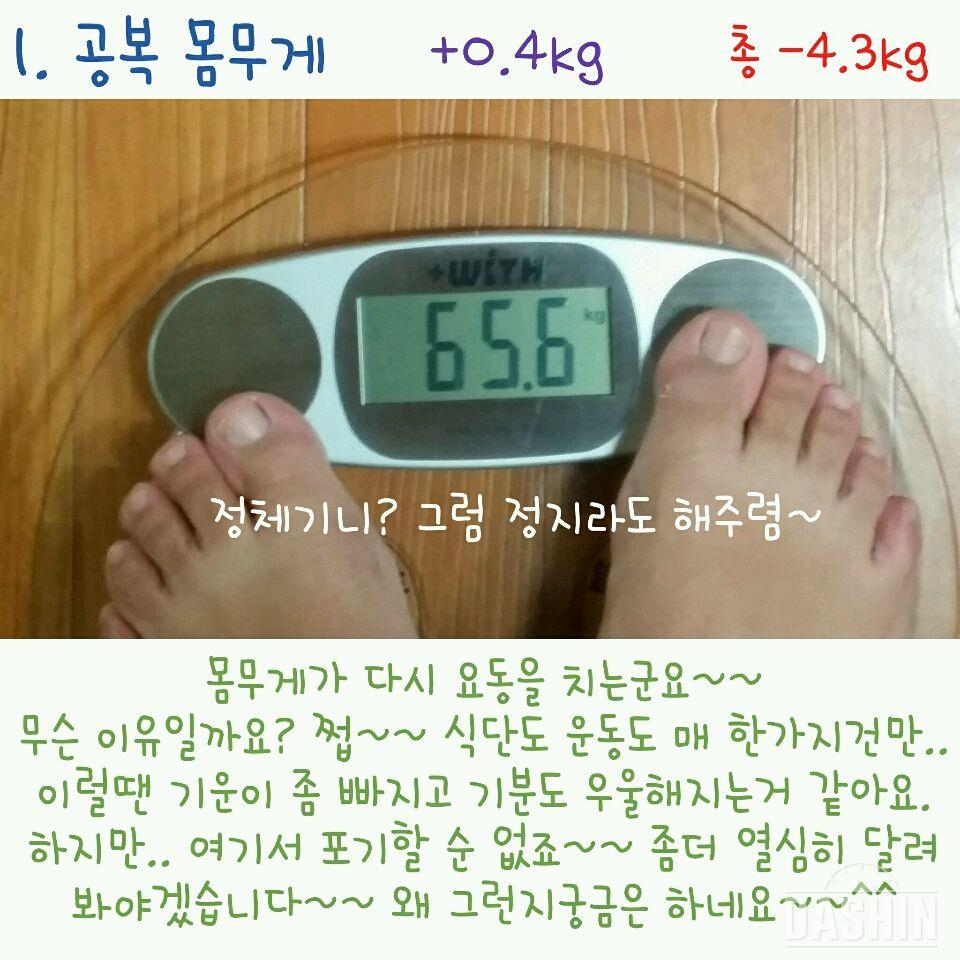 [도전 다신 3기] 😥 18일차