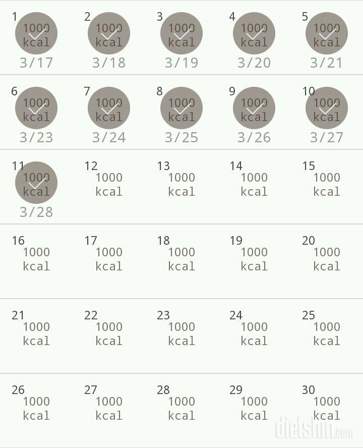 30일 1,000kcal 식단 41일차 성공!