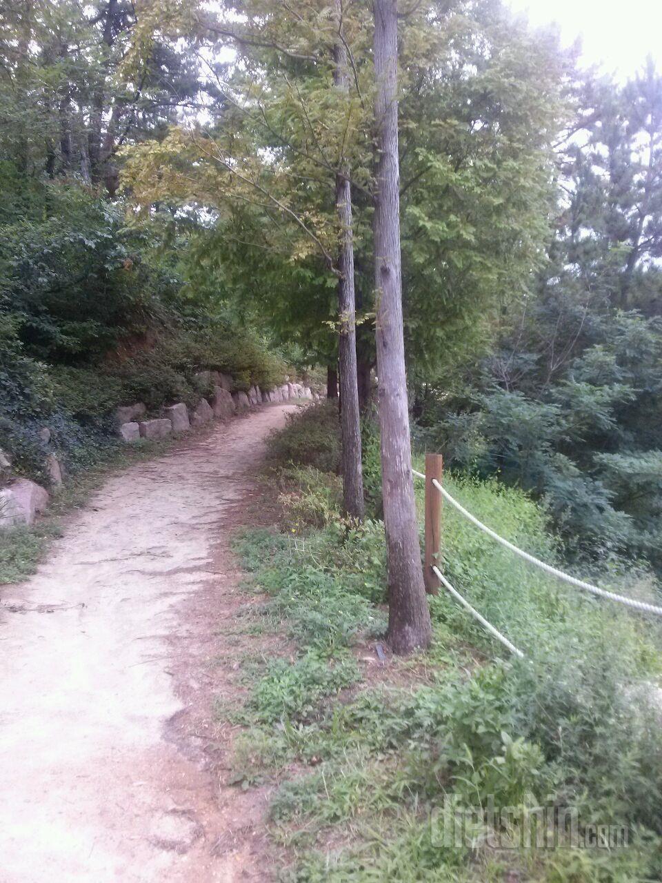 아침에 시간이 남아서 산책하기!!