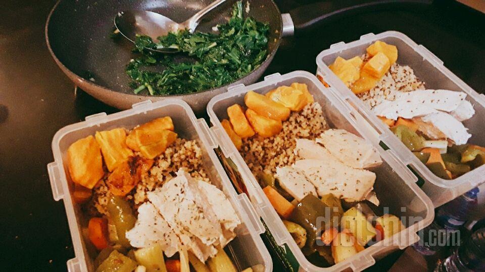 Meal prep 다이어트 도시락
