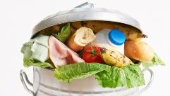 다이어트에서 화학물질 배출이 중요한 이유!?