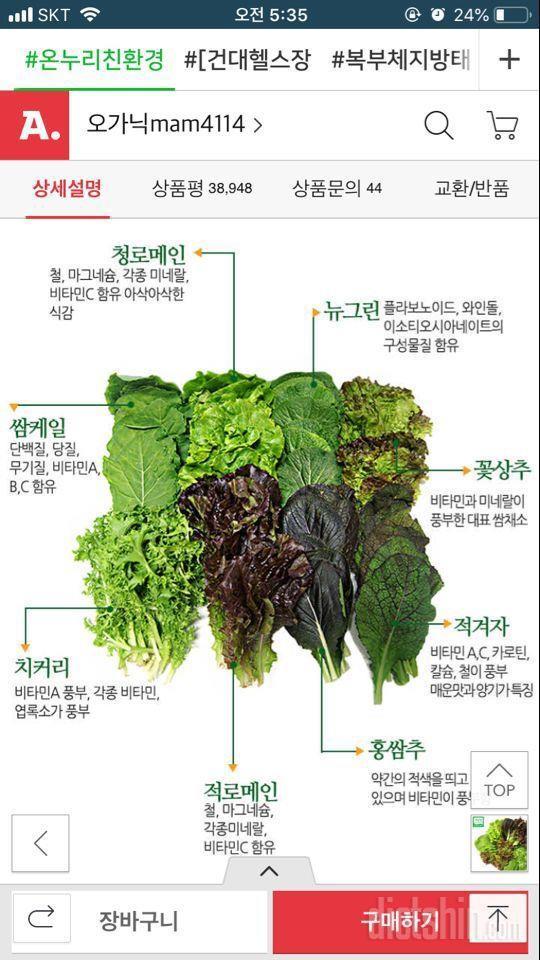 건강하게 야채 영양소 알고먹기