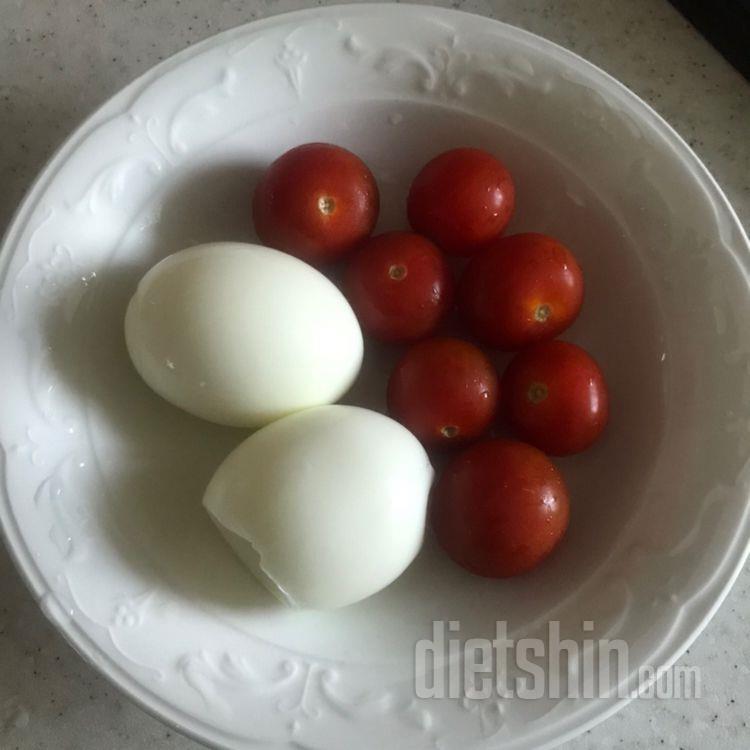 계란 토마토