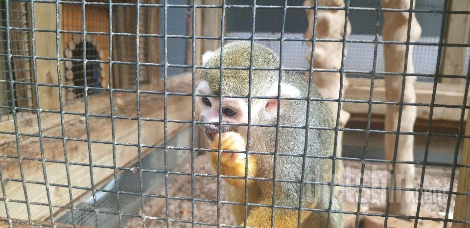 10월9일 동물원 ㅡ휴일은 참어려워