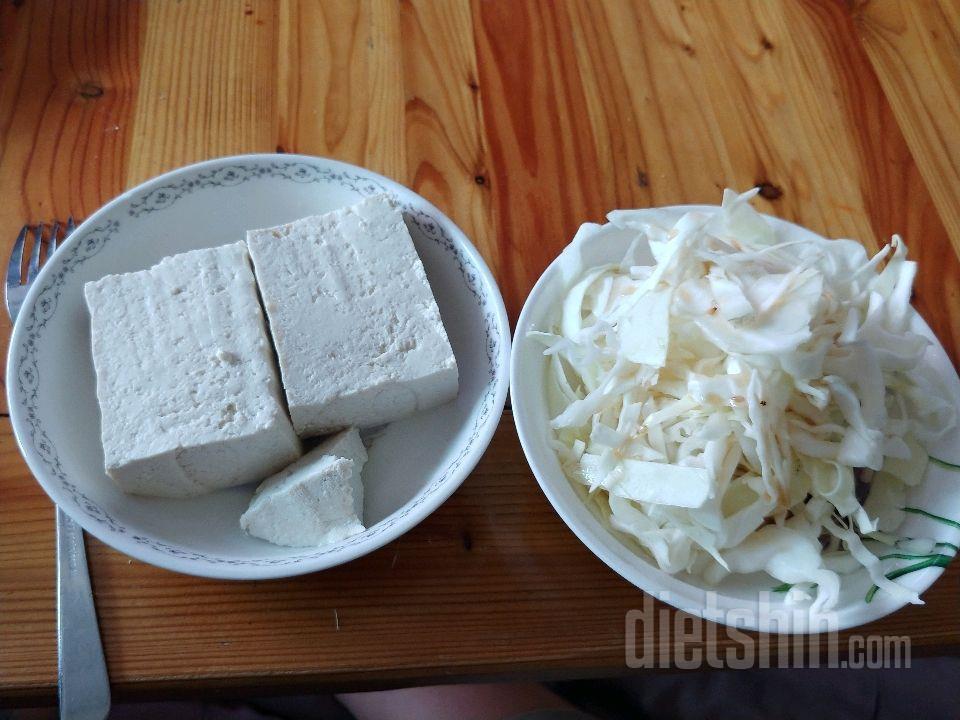 다요트 식단
