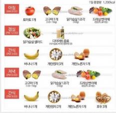 살빠지는 식단