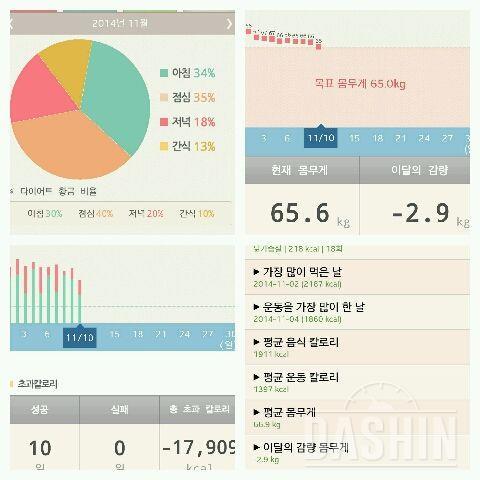 완투]11월10일 10일차일기(중간점검)