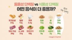 동물성 단백질 VS 식물성 단백질, 슬기로운 섭취법!