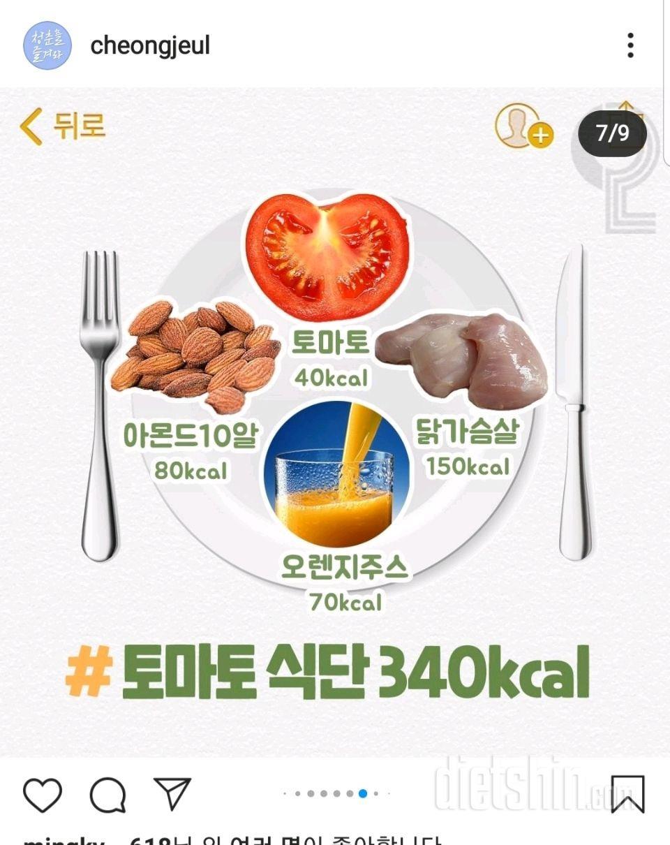 340kcal 토마토 식단