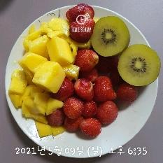 05월 09일( 저녁식사 259kcal)