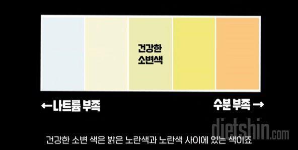 소변 색으로 보는 체내 수분량!