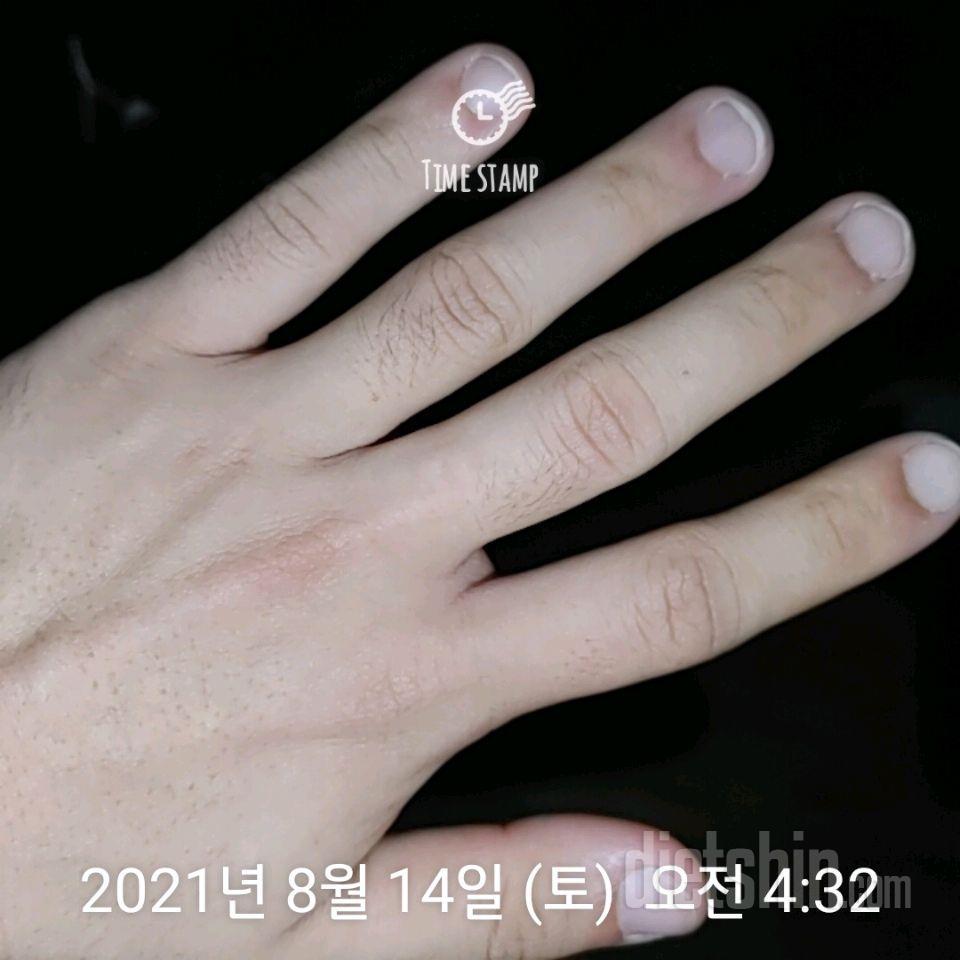 1-1 21년 12월 바디프로필 찍기 D -127일(210814예안기록)