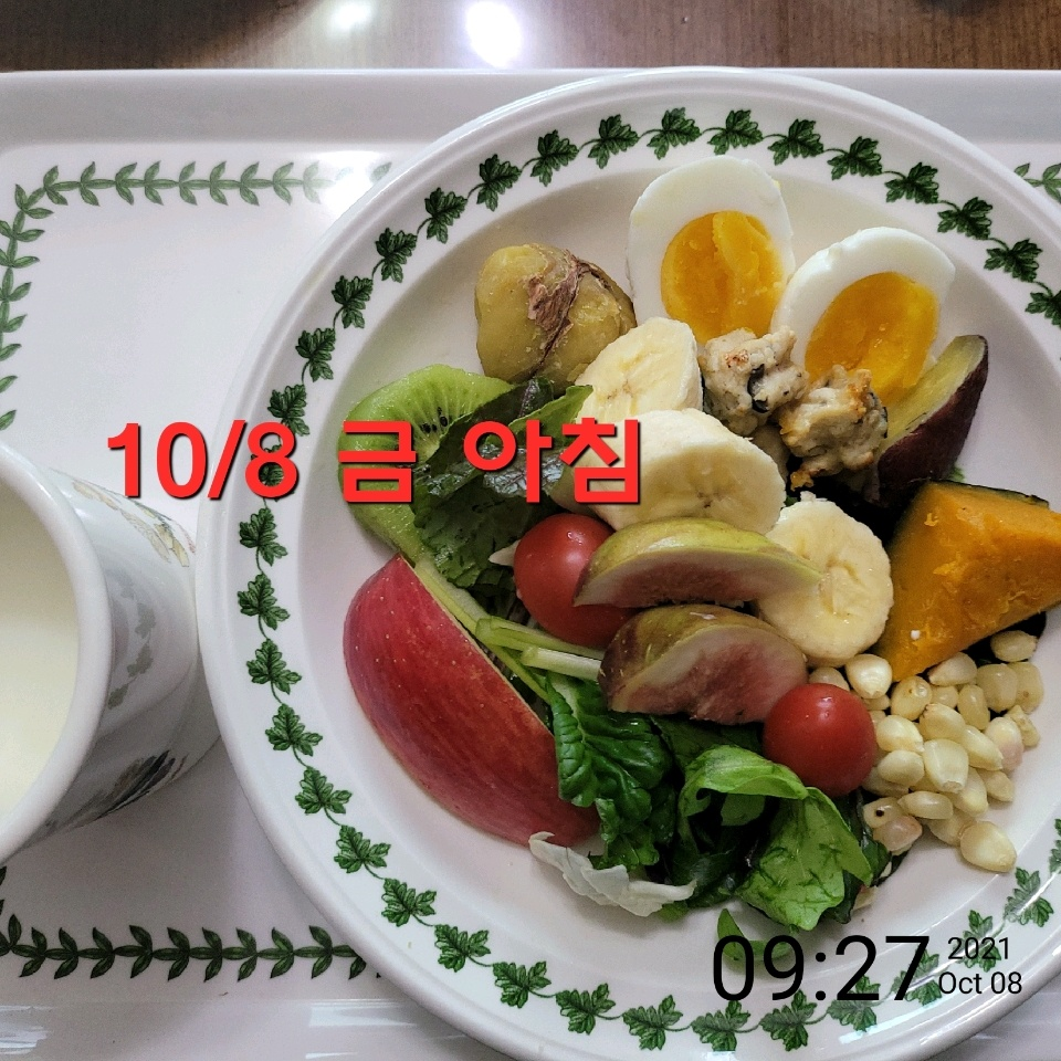10월 08일( 아침식사 354kcal)