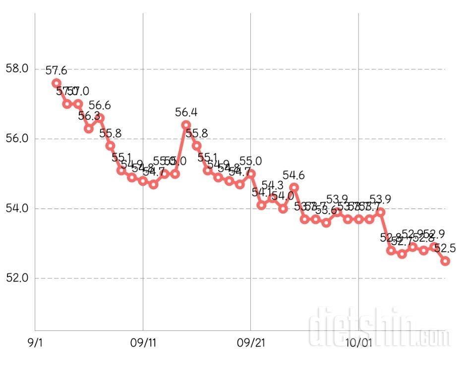 1년동안 다이어트 ing (67kg->55kg->52kg)