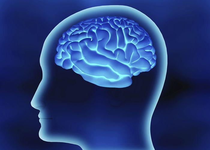 뇌를 속이면 다이어트에 성공한다!