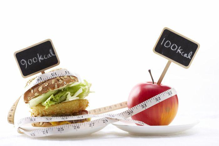 가장 효과없는 칼로리 다이어트